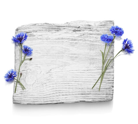 barnangen_com_swedish_inspired_ingredients_cornflower_480x430